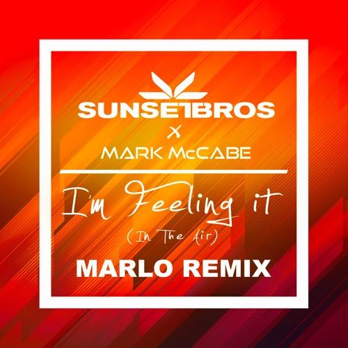 MaRLo remix